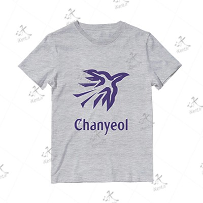 تیشرت ملانژ دخترانه EXO طرح Chanyeol Power, مدل Violet